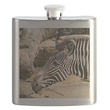 Zebra003 Flask
