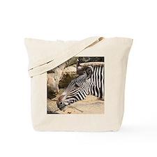Zebra003 Tote Bag