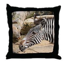 Zebra003 Throw Pillow