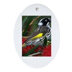 New Holland Honeyeater Oval Ornament