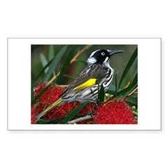 New Holland Honeyeater Rectangle Decal