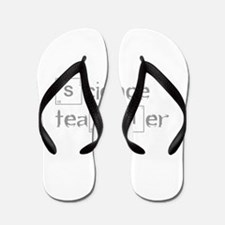 science-teacher-break-gray Flip Flops