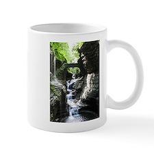 Watkins Glen, NY Mugs