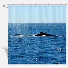 Humpback Whale Fins Shower Curtain