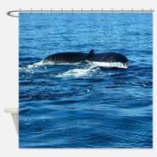 Humpback Whale Tail 2 Shower Curtain