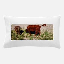 Highland Cattle Pillow Case