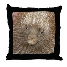 Quillan Throw Pillow