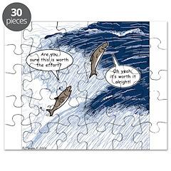Salmon Run Puzzle