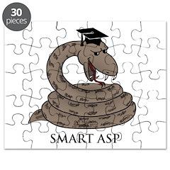 Smart Asp Puzzle