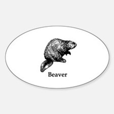 Beaver (line art) Decal