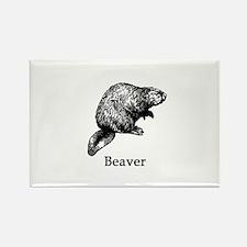 Beaver (line art) Magnets