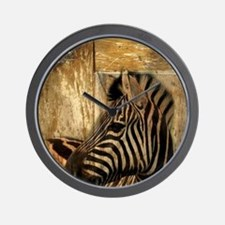 wild zebra safari Wall Clock