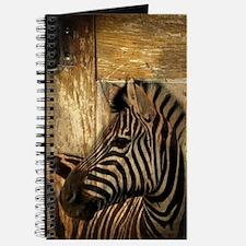 wild zebra safari Journal