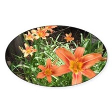 Tiger Lillies Decal