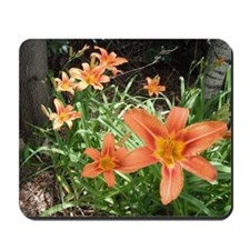 Tiger Lillies Mousepad