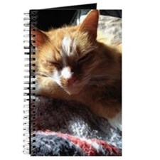 Cozy Sunny Cat Journal
