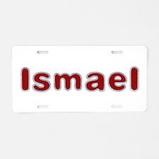 Ismael Santa Fur Aluminum License Plate