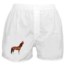 Horse Rooster Boxer Shorts