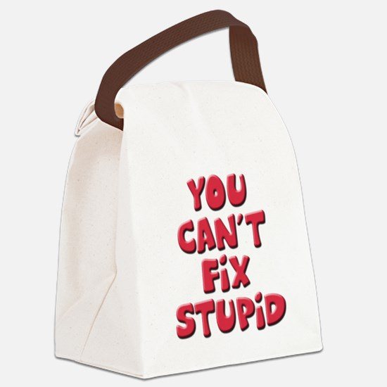 Fix Stupid Canvas Lunch Bag