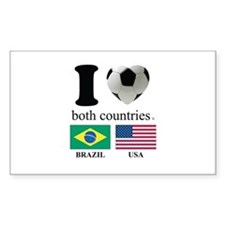 BRAZIL-USA Decal