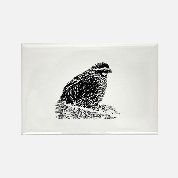 Line Drawing Quail : Quail magnets refrigerator cafepress