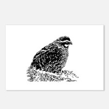 Bobwhite Quail (line art) Postcards (Package of 8)