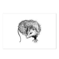 Opossum (line art) Postcards (Package of 8)