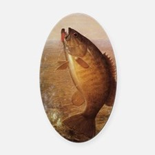 Vintage Largemouth Brown Bass Fish Oval Car Magnet
