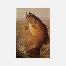 Vintage Largemouth Brown Bass Fis Rectangle Magnet