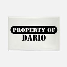 Property of Dario Rectangle Magnet