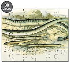 Vintage Marine Life, Lamprey Eels Puzzle