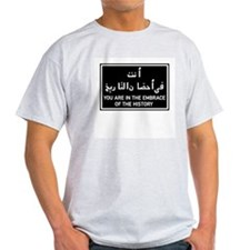 In the embrace of history, Egypt Ash Grey T-Shirt