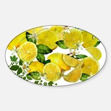 Acid Lemons from Calabria (Vintage Edition Decal