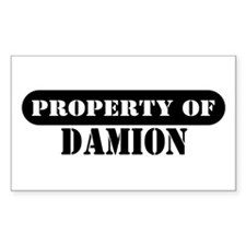 Property of Damion Rectangle Decal