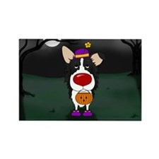 Border Collie Clown Rectangle Magnet