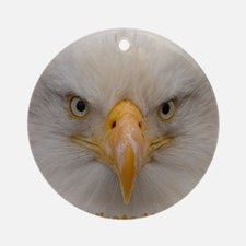 Whats Up Bald Eagle Ornament (Round)
