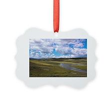 Buffalo Crossing, Antelope Flats, Ornament
