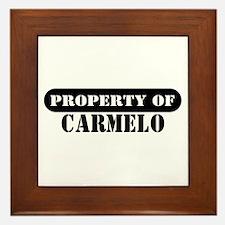 Property of Carmelo Framed Tile