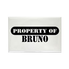 Property of Bruno Rectangle Magnet