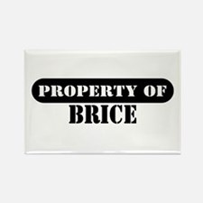 Property of Brice Rectangle Magnet