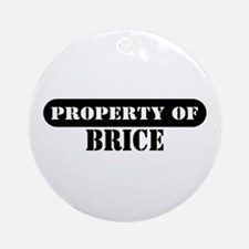 Property of Brice Ornament (Round)