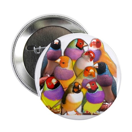 Gouldian Finch Button