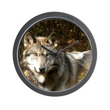 Funny Timber wolf Wall Clock