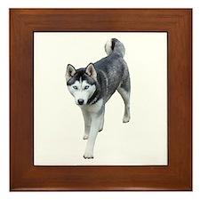 Husky Framed Tile