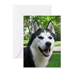 Husky Greeting Cards (Pk of 10)