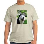 Husky Ash Grey T-Shirt
