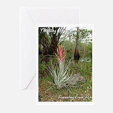 Fisheating Creek -Plants Greeting Cards