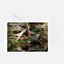 Fisheating Creek -Turtle Greeting Cards