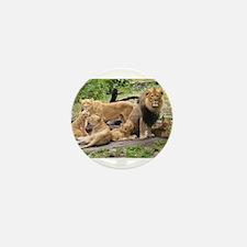LION FAMILY Mini Button (10 pack)
