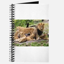 LION FAMILY Journal